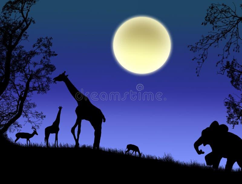 zwierzęta dzicy royalty ilustracja