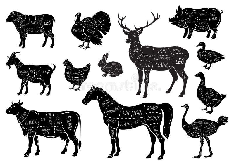 Zwierzęta gospodarskie ikony ustawiać Kolekcja etykietki z pięknym tak jak koźliej kurczaka knura świniowatej kaczki gęsia końska royalty ilustracja