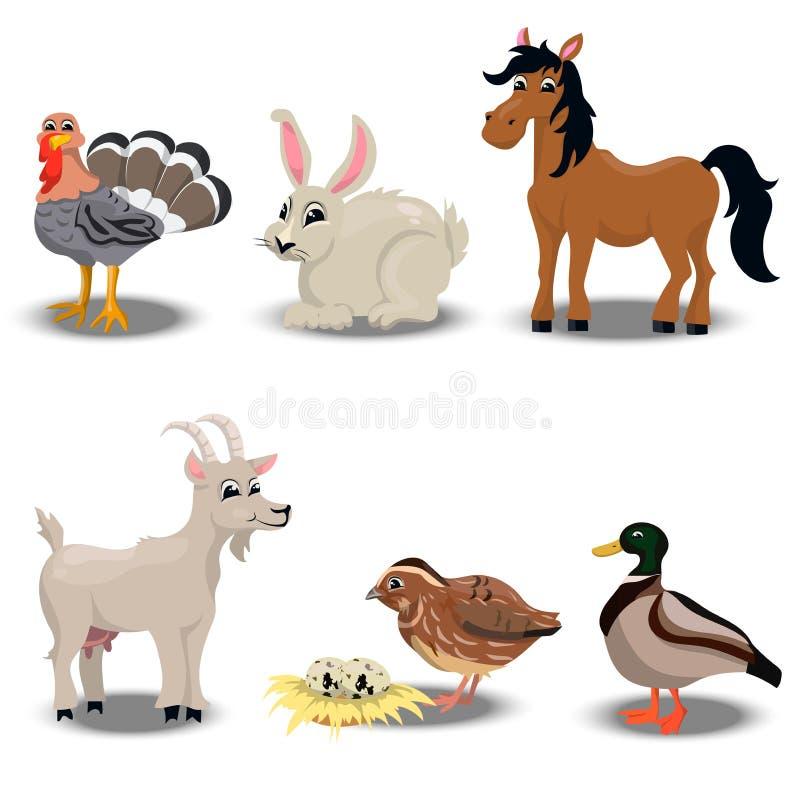 Zwierzęta gospodarskie inkasowi ilustracji