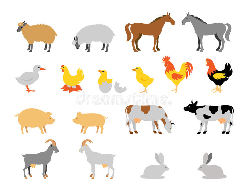 Zwierzęta gospodarskie kolekci set Mieszkanie stylowy charakter ilustracja wektor