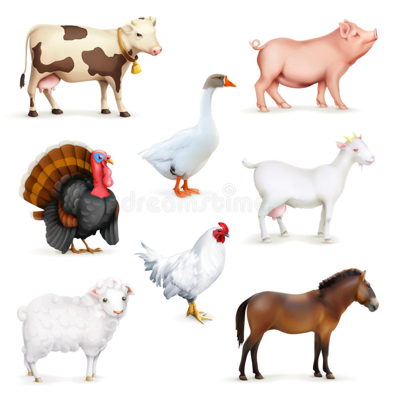 Zwierzęta i ptaki ilustracji