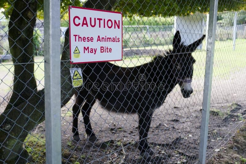 Zwierzęta mogą gryźć znaka ostrzegawczego przy zoo safari parkiem obraz royalty free