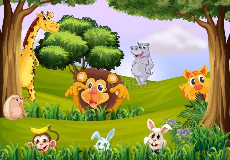 Zwierzęta przy lasem ilustracji