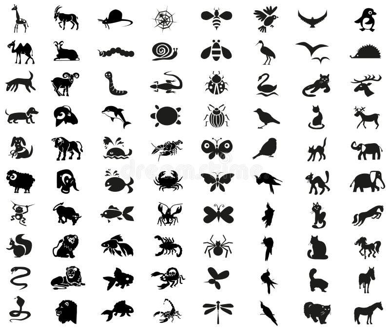 Zwierzęta, ptaki, insekt ikony ilustracji