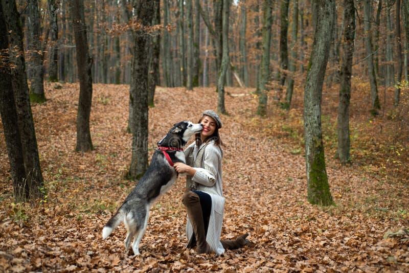 Zwierz?cy szkolenie Rodowodu psi poj?cie Najlepsi Przyjaciele Dziewczyna cieszy si? spacer z husky psem Syberyjskiego husky ulubi obrazy royalty free