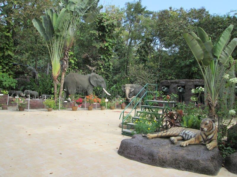 Zwierz?cy zoo w Tajlandia zdjęcia royalty free