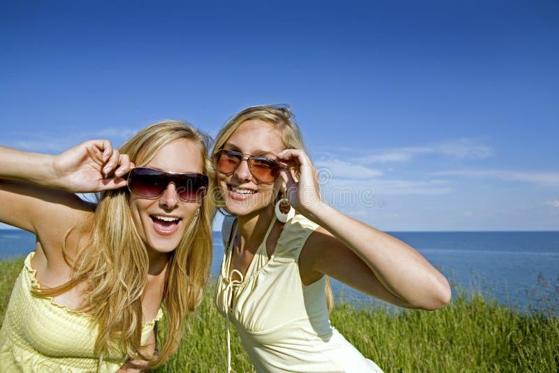 Zwillinge am Sommer stockbild
