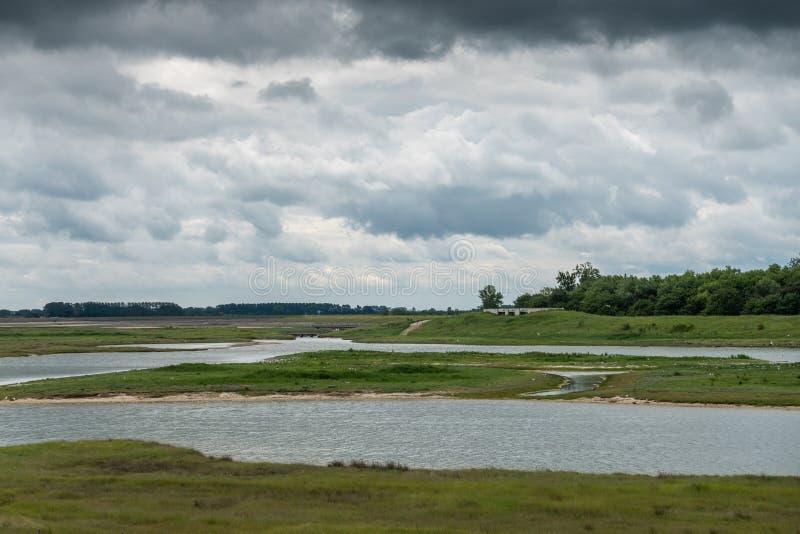 Zwin bird refuge plain, Knokke-Heist, Belgium. Knokke-Heist, Flanders, Belgium -  June 16, 2019: Knokke-Zoute part of town. Zwin bird refuge plain set on green stock image