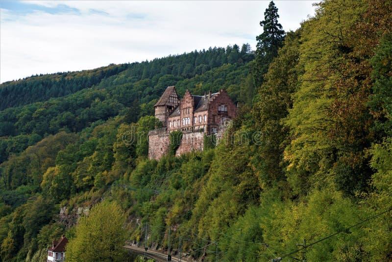 Zwingenberg kasztel intronizujący nad kolejowym śladem w Odenwald lesie zdjęcia royalty free