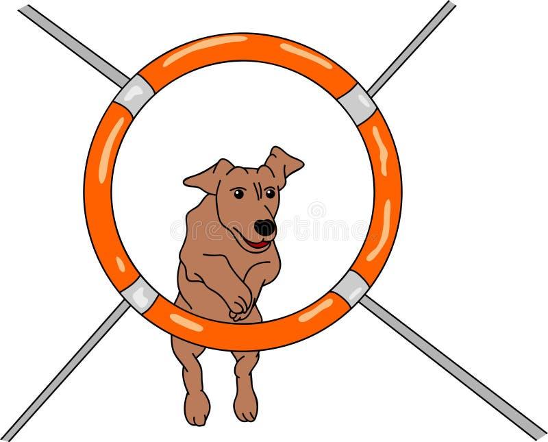 zwinność pies ilustracja wektor