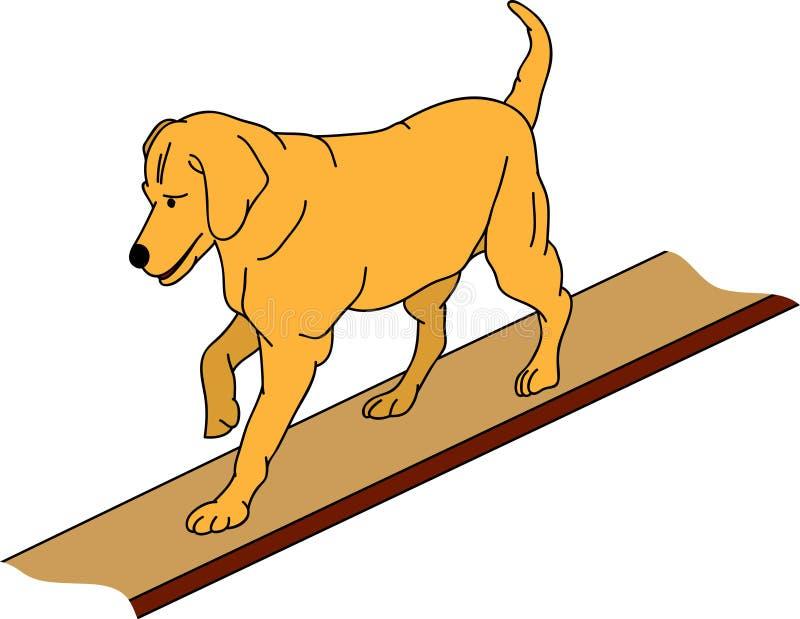 zwinność pies royalty ilustracja