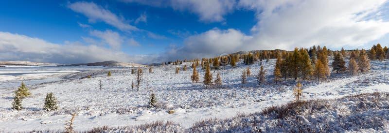 Zwischen Herbst und Winter lizenzfreies stockfoto