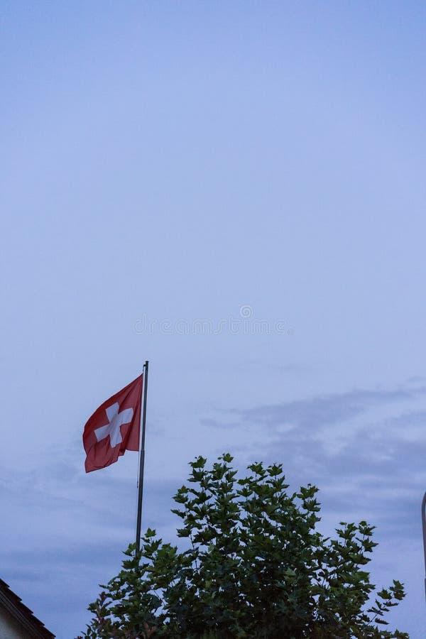 Zwitserse nationale vlag met donkere zonsondergang bewolkte hemel en boom royalty-vrije stock foto's