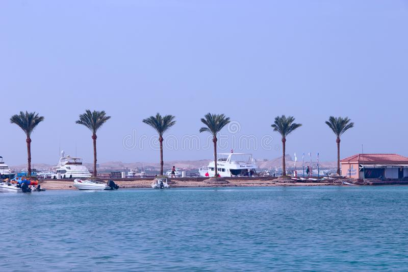 Zwrotników drzewka palmowe na seashore i jachtów stojaku wzdłuż brzeg piękni pojęcia basenu wakacje kobiety potomstwa obrazy stock