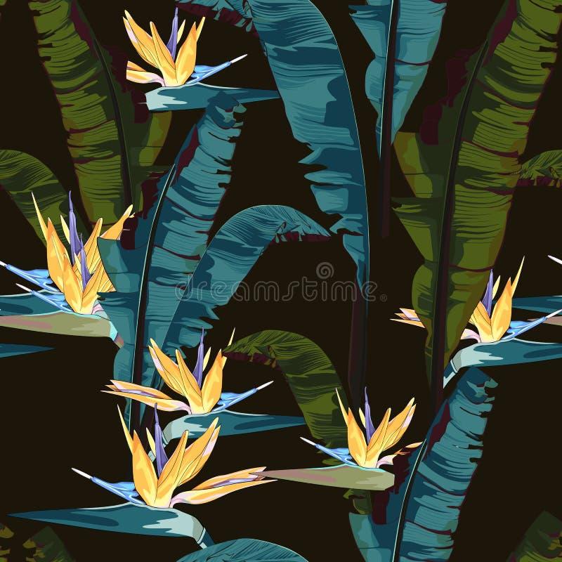 Zwrotnika lato maluje bezszwowego wektoru wzór z palmowym bananowym liściem i roślinami Kwieciści dżungli strelitzia raju kwiaty ilustracja wektor