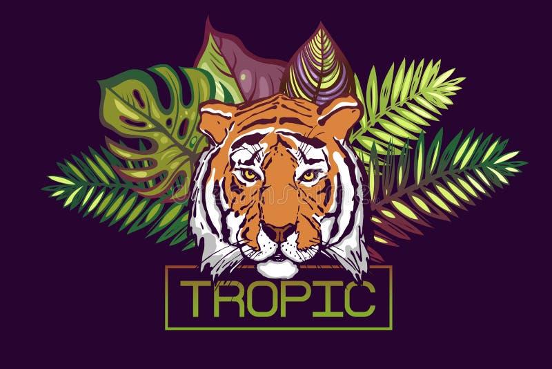 Zwrotnika tekst Karta z tropikalnym projektem Głowa tygrys na tle liście tropikalni drzewa: Monstera, palma, poślubnik ilustracja wektor