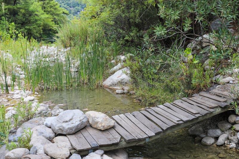 Zwyczajny drewniany most przez małą halną rzekę, płynący wśród lasu i kamieni zdjęcia royalty free