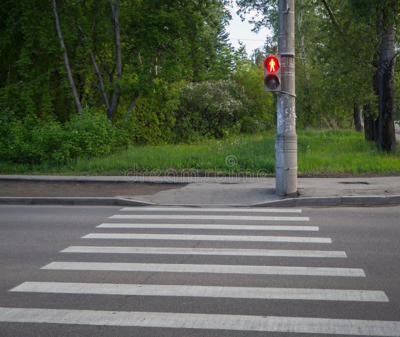 Zwyczajny skrzyżowanie zebry z światłami ruchu zdjęcie royalty free