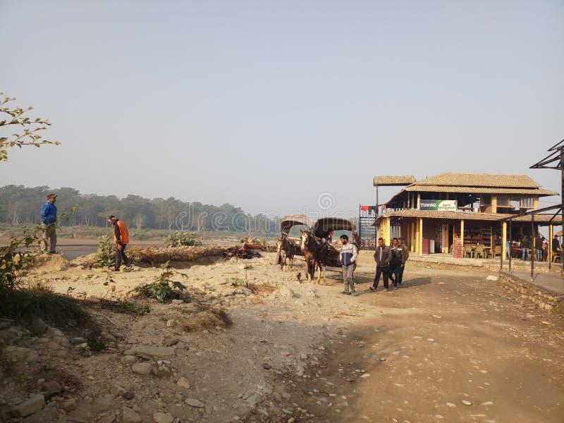 Zwykłe życie przy chitwan fotografia stock