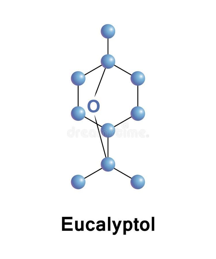Zyklischer Äther Eucalyptol und ein monoterpenoid vektor abbildung