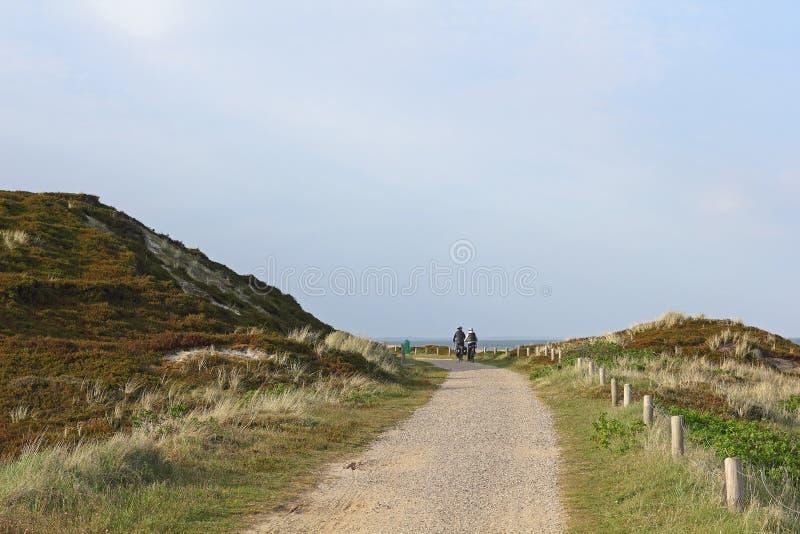 Zyklusweg auf der Insel von Sylt lizenzfreies stockbild