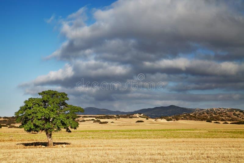 Zypern-Landschaft lizenzfreies stockfoto