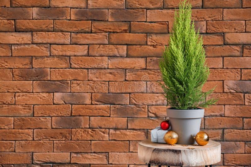 Zypresse-Baum, Geschenkbox und Weihnachtsdekorationen auf Tabelle nahe Backsteinmauer lizenzfreies stockbild