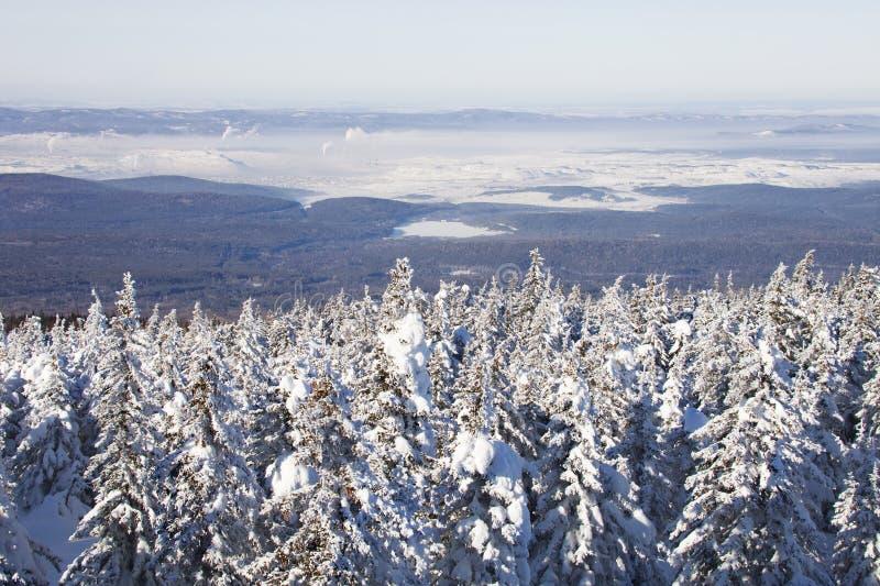 Zyuratkul, ландшафт зимы Городок елей и Satka далеко стоковые изображения rf
