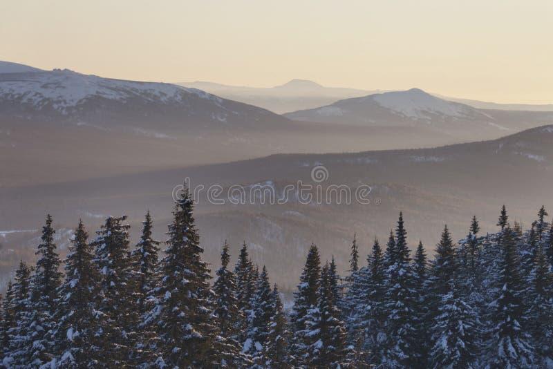 Zyuratkul, paisaje de la puesta del sol del invierno piceas fotos de archivo libres de regalías