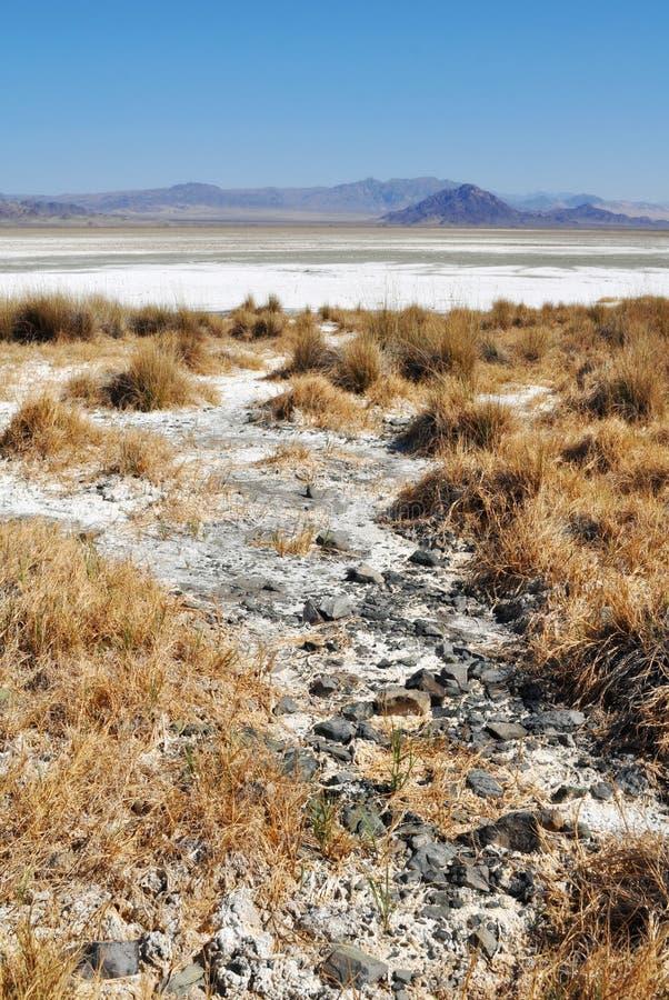 Zzyzx, lago soda, deserto del Mojave fotografie stock libere da diritti
