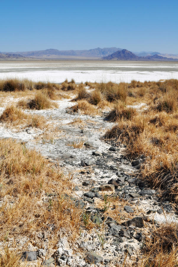 Zzyzx sodavatten sjö, Mojaveöken royaltyfria foton