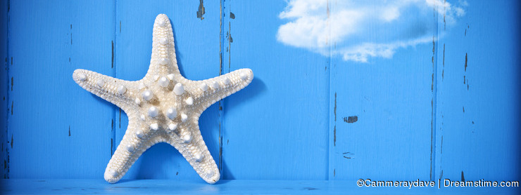 Starfish Cloud Blue Background