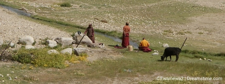 Budhist monks contemplating the nature