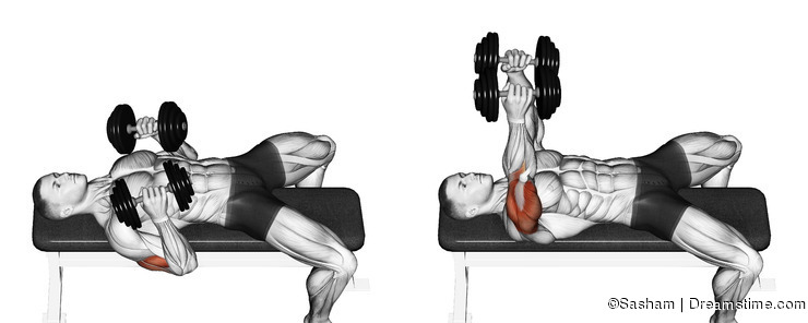 Exercising. Dumbbell bench press lying down with y