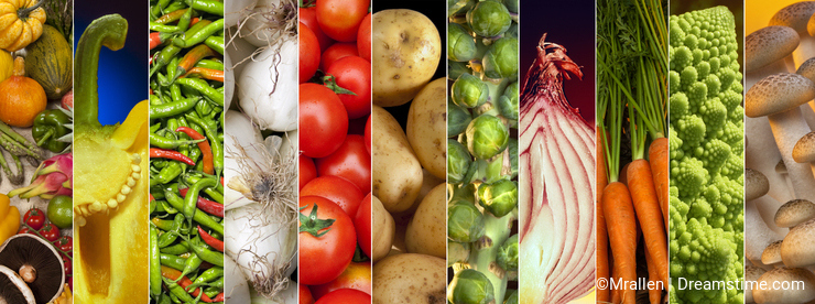 Food - Fresh Vegetables - Page Header