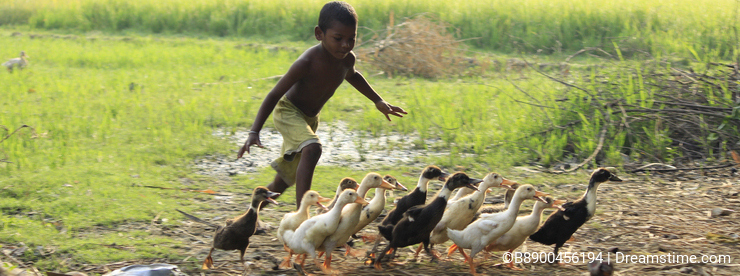 Chasing the duckling. Boundless joy of childhood.