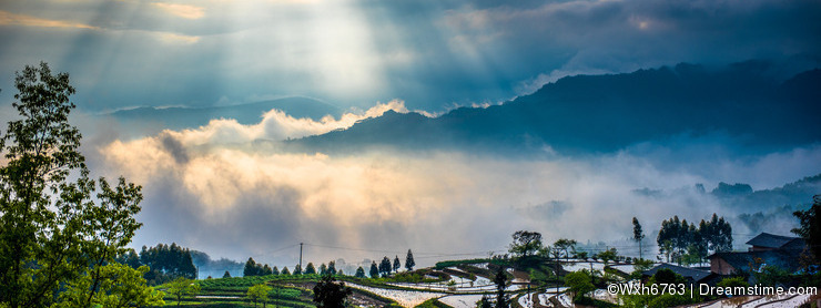 Rice terraces and diffraction light