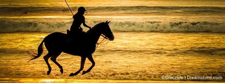 Polo player on beach
