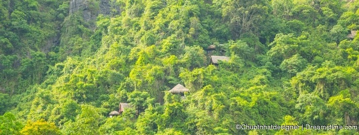 House on forest for transporting tourists to Phong Nha cave, Phong Nha - Ke Bang national park, Viet Nam.