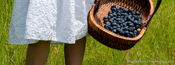 Child with basket of blueberries