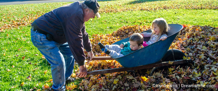 Grandpa playing with grandkids in a pile of leaves