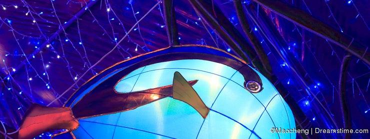 Chinese lantern shape of sea fish