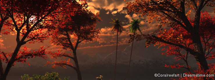 Beautiful imaginary forest during sunset or sunrise