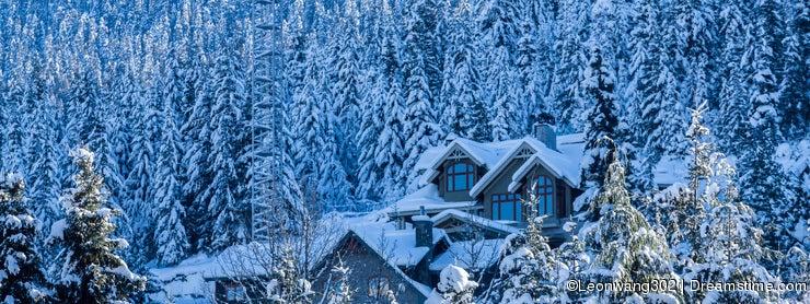 House in Frozen tree