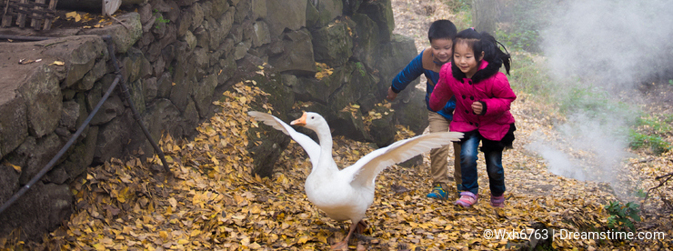 Boy and Girl Playing with Geese