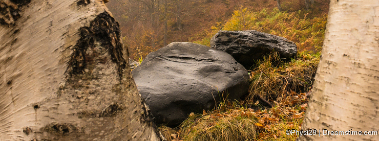 Rocks and trees at the Val de Aran