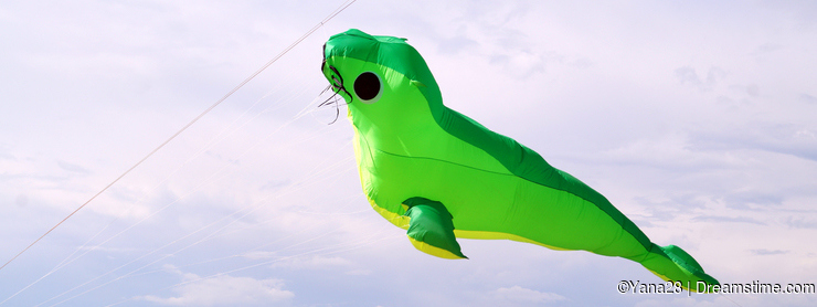 Big green kite