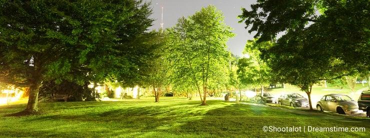 Starry Summer Night Before Dawn