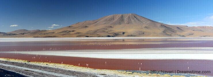 Laguna Colorada panoramic view. Eduardo Avaroa Andean Fauna National Reserve. Bolivia