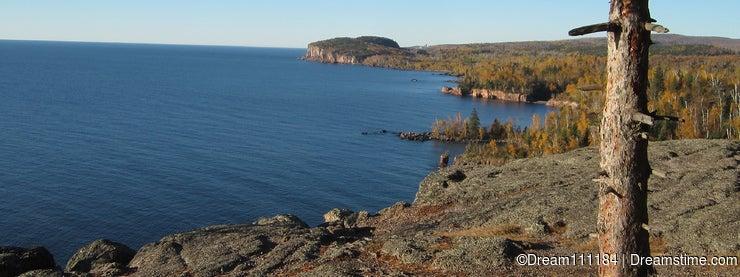 Lone Pine Tree on Lake Superior